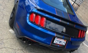 WrapStar Pro- Automotive Custom Striping Mustang Rally Stripes